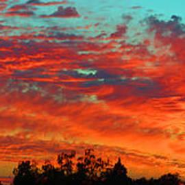Lynn Bauer - Heavenly Skies