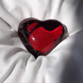 Katie Wing Vigil - Heavy Heart