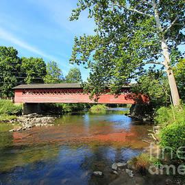 Henry Bridge by Trina  Ansel