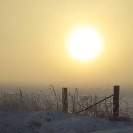 Lori Frisch - Here Comes the Sun