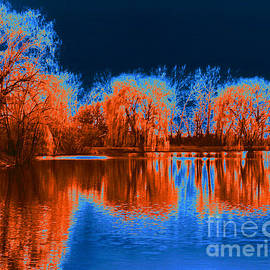 ImagesAsArt Photos And Graphics - Herrick Lake Willows Solarized