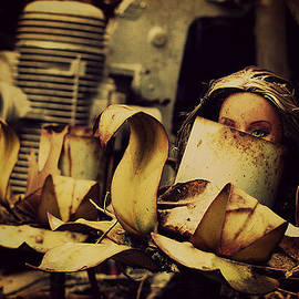 Hidden Beauty by Ashley Davis