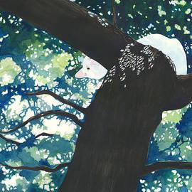 Hide And Seek by Pauline Walsh Jacobson