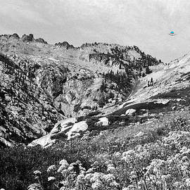 High In The Trinity Alps With Bigfoot And A Ufo by Ben Upham III