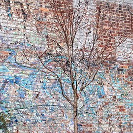 High Line Palimpsest by Rona Black