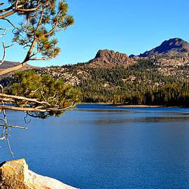 Lynn Bawden - High Sierra Gem
