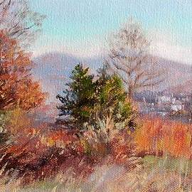 Hill Top View- in Autumn by Bonnie Mason
