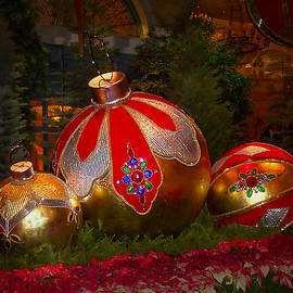 Holiday Decorations by Lucinda Walter
