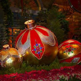 Lucinda Walter - Holiday Decorations