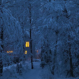 Alan L Graham - Home In Snowy Woods