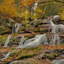 Stephen  Vecchiotti - Hornsbecks Creek Falls In Autumn