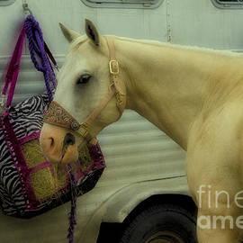 Bob Christopher - Horse Art 2