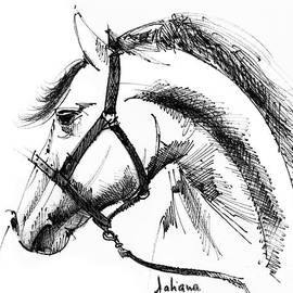 Daliana Pacuraru - Horse face ink sketch drawing