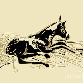 Go Van Kampen - Horse-foal- just born