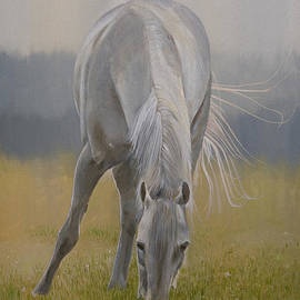 Bill Dunkley - Horse in Pasture