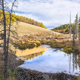 Brian Harig - Horsethief Creek Beaver Pond - Cripple Creek Colorado
