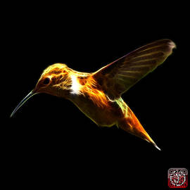 Hummingbird - 2054 F by James Ahn