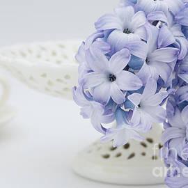Hyacinth by Ann Garrett