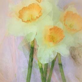 The Art Of Marilyn Ridoutt-Greene - I Love the Daffodils...