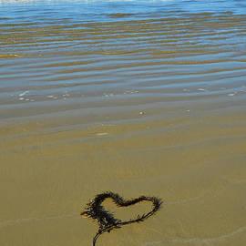 Debra Thompson - I Love The Ocean