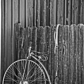 Lee Craig - I Want to Ride My Bicycle in Black and White
