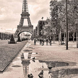 Icon Reflected Sepia by Lindley Johnson