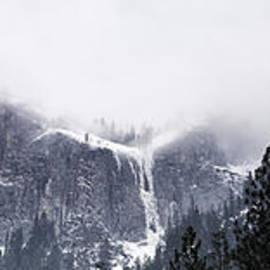 Michele Steffey - Icy Sentinels