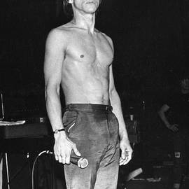 Iggy Pop by Joyce Weir