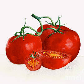 Nan Wright - Illustration of Red Ripe Tomatoes and vine