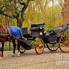 Imran Ahmed - Immaculate horse and carriage Bruges Belgium
