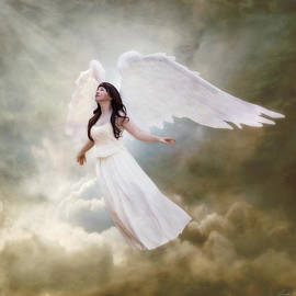 Linda Lees - In the arms of the Angels