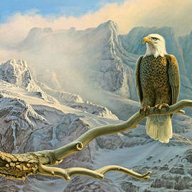 In the High Country-Eagle by Paul Krapf