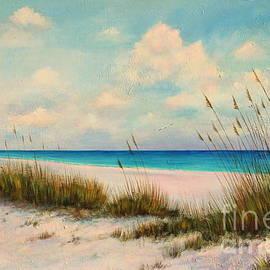 Gabriela Valencia - Indian Rock Beach Florida