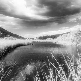 Infrared Green Creek by Frank Lee Hawkins