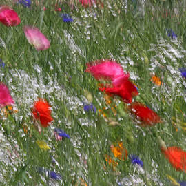 Inspired By Monet by Juergen Roth