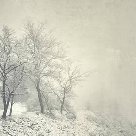 Guido Montanes Castillo - Into the fog Retro