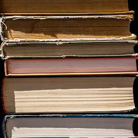 Alexander Senin - iPhone Case - Pile Of Books