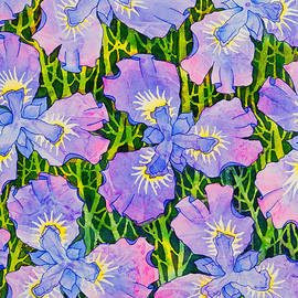 Iris Patterns by Teresa Ascone