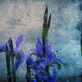 Irises by Lali Kacharava
