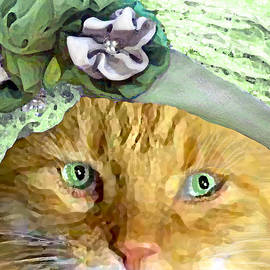 Irish Cat by Michele Avanti