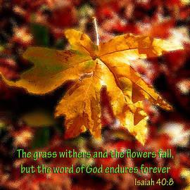 Isaiah Autumn Leaf