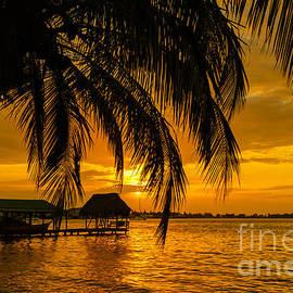 Isla Colon Sunset by Oscar Gutierrez