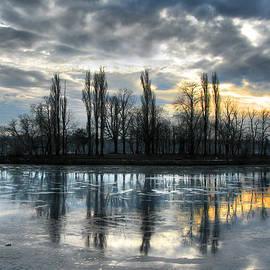 Daliana Pacuraru - Island in Winter - Reflection