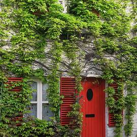 Ann Horn - Ivy Cottage