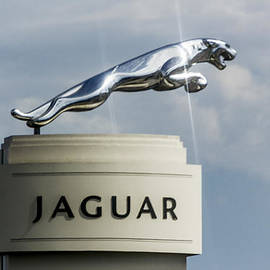 Jaguar Emblem by Photographic Art by Russel Ray Photos