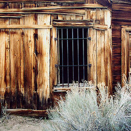 Jailhouse in Bodie State Park California by Mary Bedy
