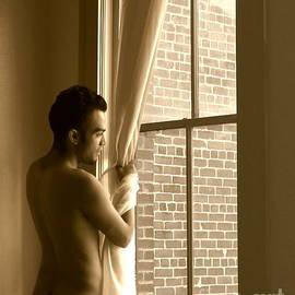 Jake At Galveston Window by Robert D McBain