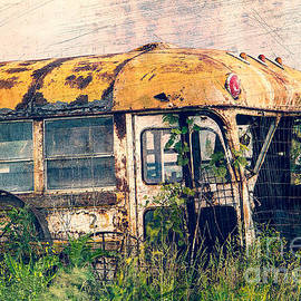 Steven Bateson - Jamesport Public Transport