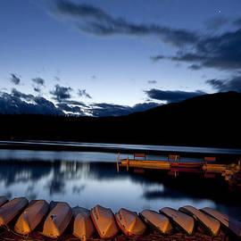 Candice Armit - Jasper at Night
