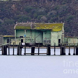 Joe Romeo's Pier at Pillar Point Harbor by Dean Ferreira